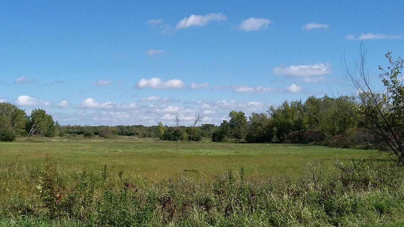 rural fields in Benton County, MN