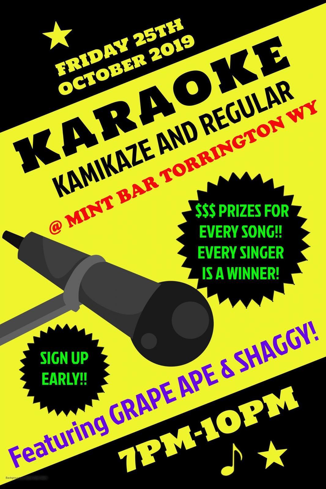 Karaoke @ The Mint Bar Photo