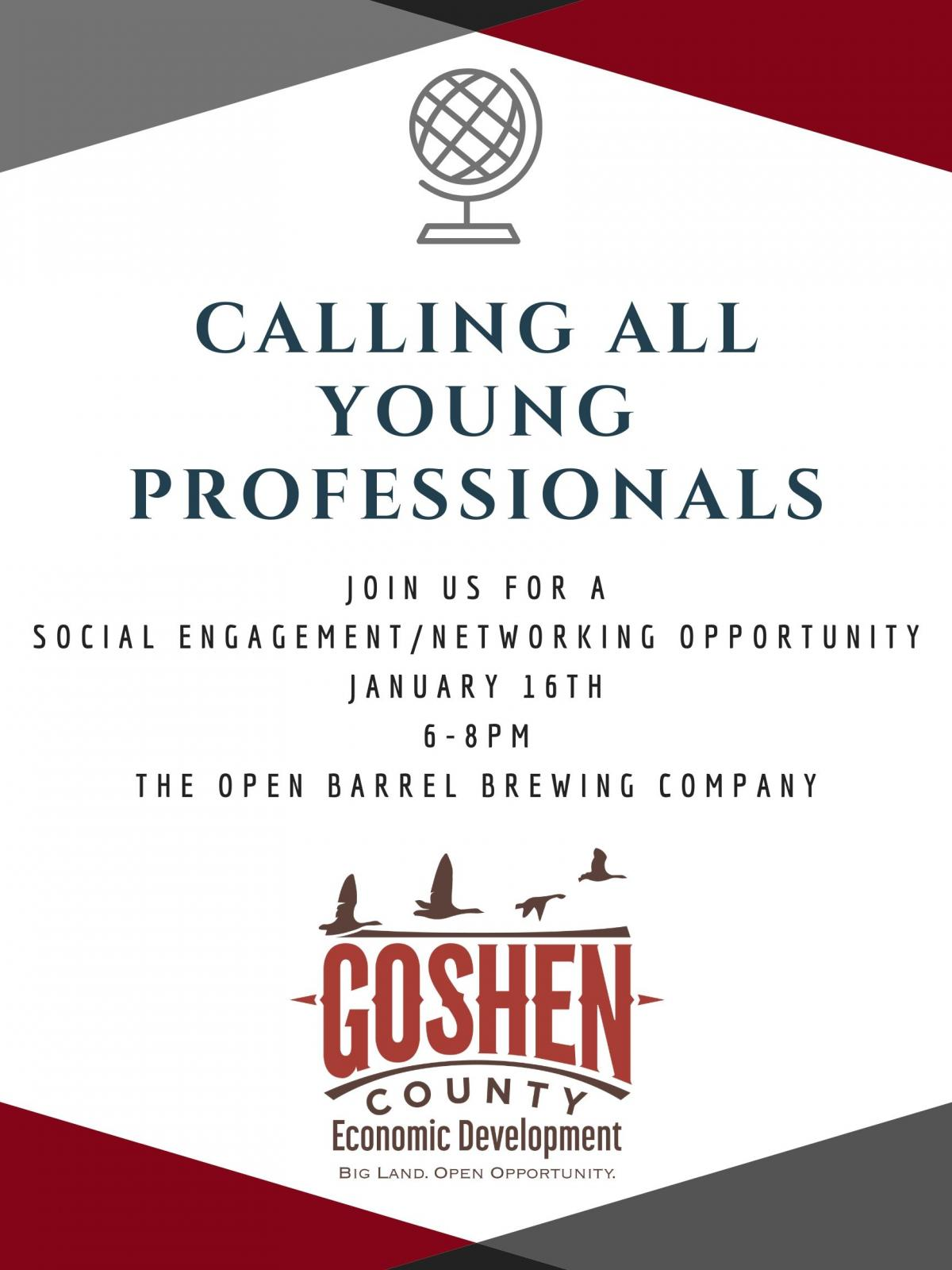 Calling All Young Professionals to a Social Engagement Photo