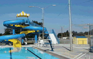 DALE JONES MUNICIPAL SWIMMING POOL Slide Image