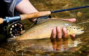 WORLD CLASS RIVER FISHING  Slide Image