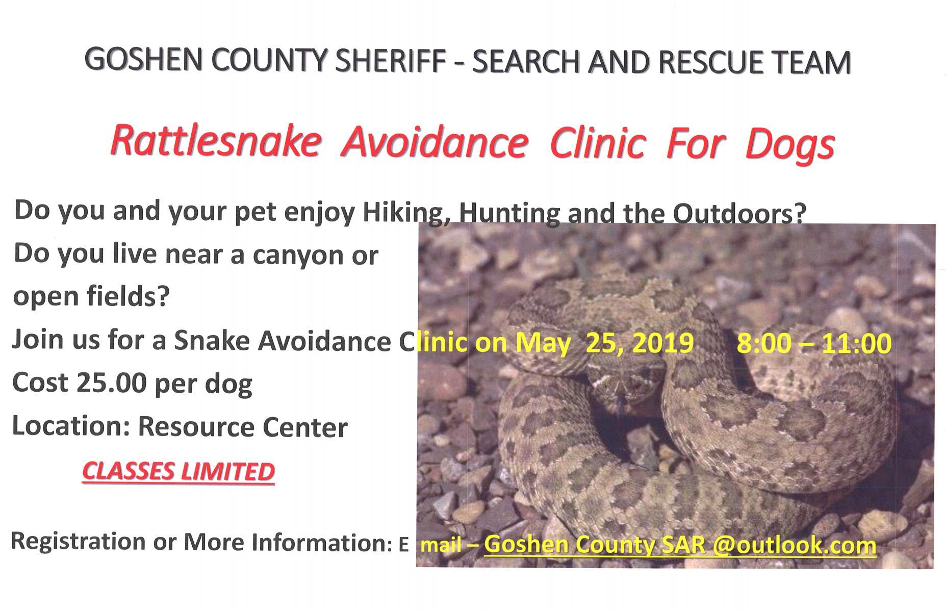 Rattlesnake Avoidance Clinic for Dogs Photo